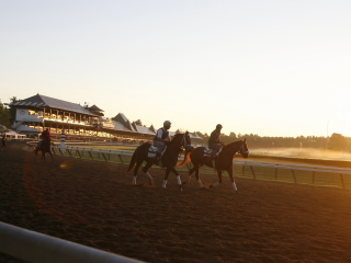 Timeform provide three US bets tonight